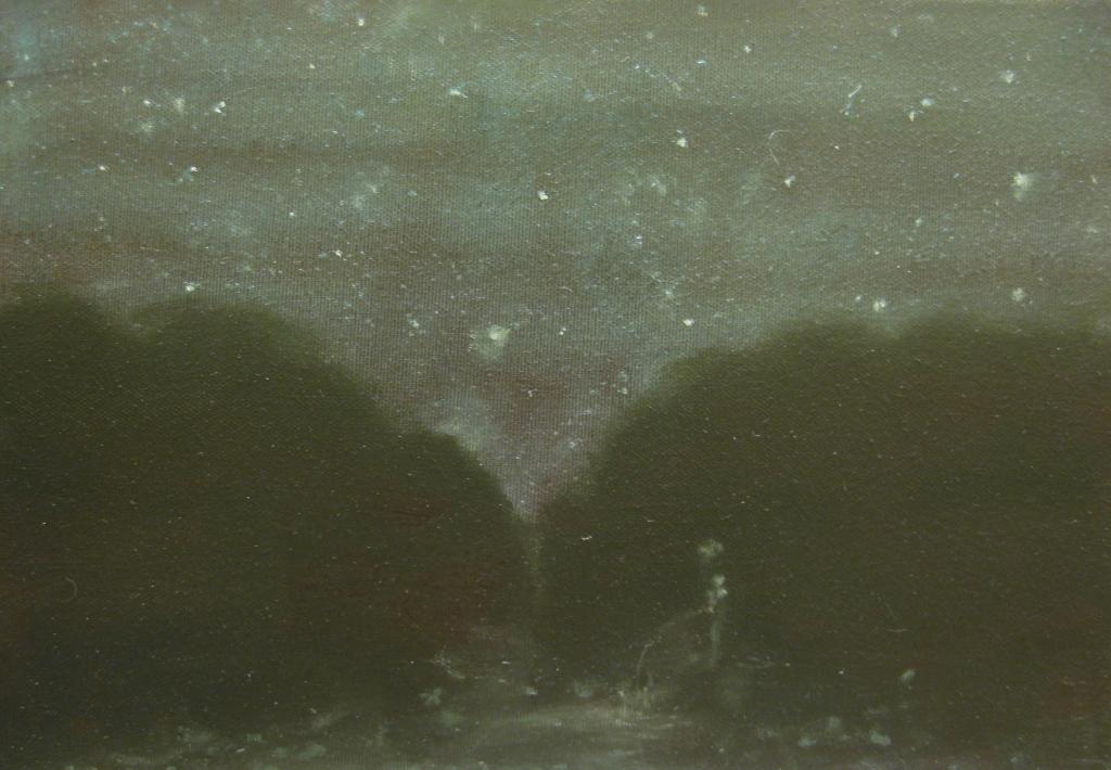 pisciatina notturna-2012-olio su tela-20x30 cm